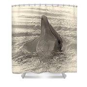 Delphin 1 Shower Curtain