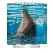 Delphin 2 Shower Curtain