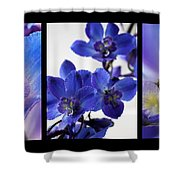 Delphinium Study Shower Curtain