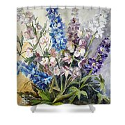 Delphiniums Shower Curtain