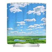 Delta Day Shower Curtain