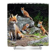 Den Mother Shower Curtain