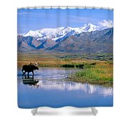 Denali National Park Shower Curtain