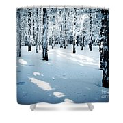 Dense Spruce Snowy Forest Shower Curtain