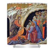 Descent Into Hell 1311 Shower Curtain