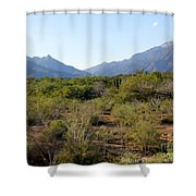 Desert And Mountains In Mexico Cabo Pulmo Shower Curtain