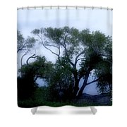 Desert At Night Shower Curtain