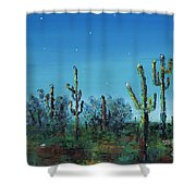 Desert Blue Shower Curtain