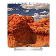 Desert Brain Rocks Shower Curtain