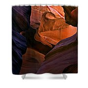 Desert Bridge Shower Curtain