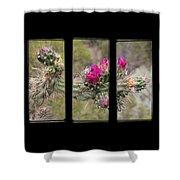 Desert Cactus Triptych Shower Curtain