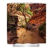Desert Canyon Paradise - Coyote Gulch - Utah Shower Curtain