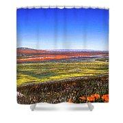 Desert Carpet Shower Curtain