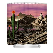Desert Cartoon Shower Curtain