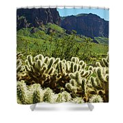Desert Cholla 1 Shower Curtain
