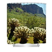 Desert Cholla 2 Shower Curtain