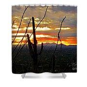 Desert City Sunset Shower Curtain