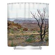 Desert Colors Shower Curtain