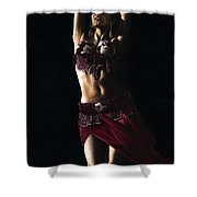 Desert Dancer Shower Curtain by Richard Young