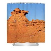 Desert Dog Shower Curtain