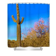 Desert Duo In Bloom Shower Curtain