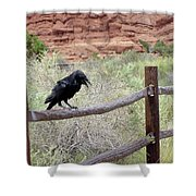 Desert Elements 11 Shower Curtain