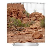 Desert Elements 5 Shower Curtain