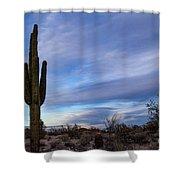 Desert Evening Shower Curtain