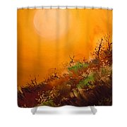 Hot Desert  Evening  Shower Curtain