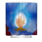 Desert Fire Shower Curtain