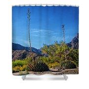 Desert Flowers In The Anza-borrego Desert State Park Shower Curtain