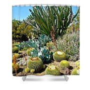 Desert Garden Shower Curtain