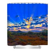 Desert Glory Shower Curtain