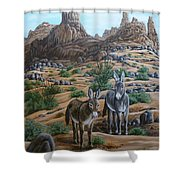 Desert Gypsy's Shower Curtain