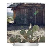 Desert Home Shower Curtain