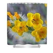 Desert In Bloom Shower Curtain