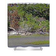 Desert Isle Shower Curtain