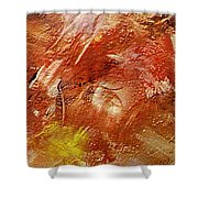Desert Land Shower Curtain