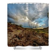 Desert Landscape With Clouds Shower Curtain