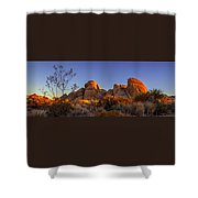 Desert Light Shower Curtain