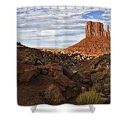 Desert Mitten Shower Curtain