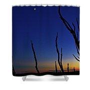 Desert Moon Shower Curtain