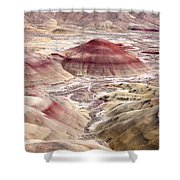 Desert Palette Shower Curtain