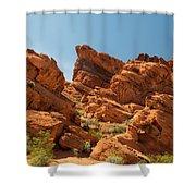 Desert Paradise Shower Curtain