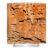 Desert Rock Shower Curtain