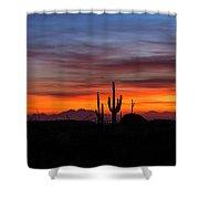 Desert Skyline  Shower Curtain