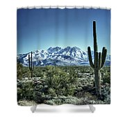 Desert Snow Shower Curtain