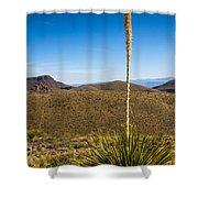 Desert Spoon #3 Shower Curtain