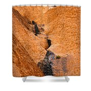 Desert Stain Shower Curtain