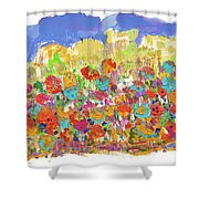Desert Stars Shower Curtain
